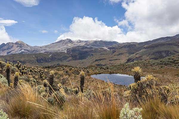 Hike at Los Nevados National Natural Park