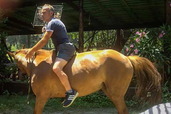 Ali on his horse in the Ali Kali restaurant