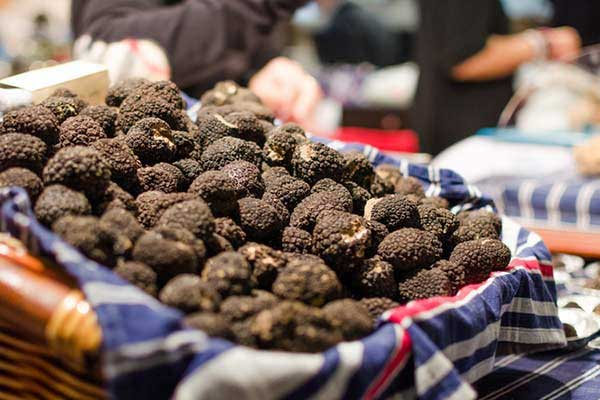 Visit a truffle festival