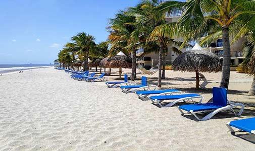 Playa Caracol: Welcome to the Neighborhood