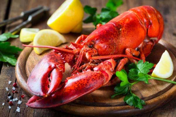 Dine at the Best Seafood Restaurant in Town