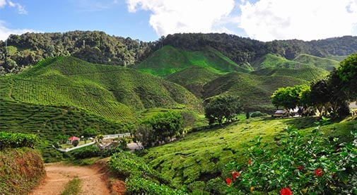 The Hill Stations of Malaysia