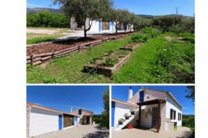 Property in Fundao Portugal