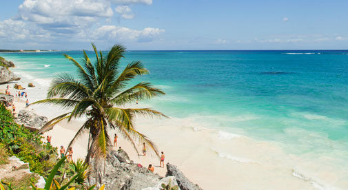 15-Minute Residency Renewal in the Mexican Caribbean