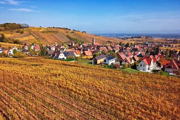 alsace-wine-route