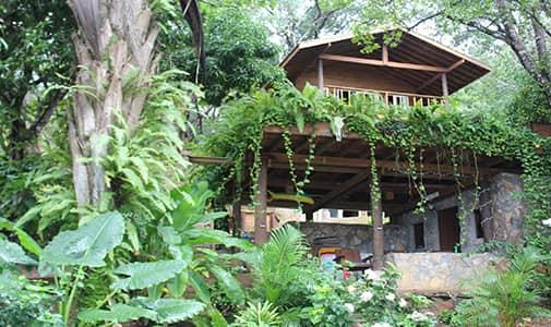 Building an Off-the-Grid Dream Home in Roatan