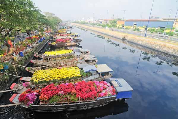 tet-flowers-in-vietnam