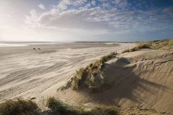 Explore the Dunes in Camber Sands
