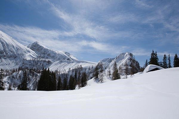 Hiking, Skiing, Nature in Munich
