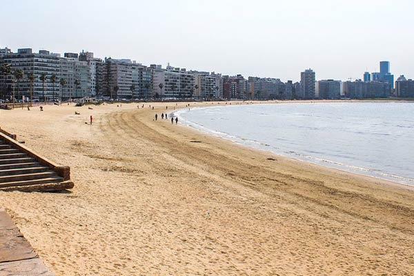 Montevideo's Pocitos Area
