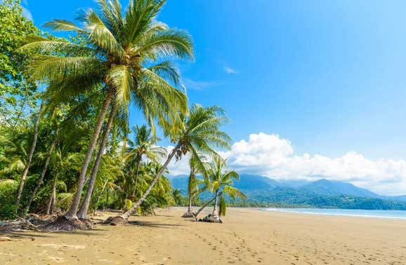 Ditching the Rat Race for a No Stress Life in Platanillo, Costa Rica